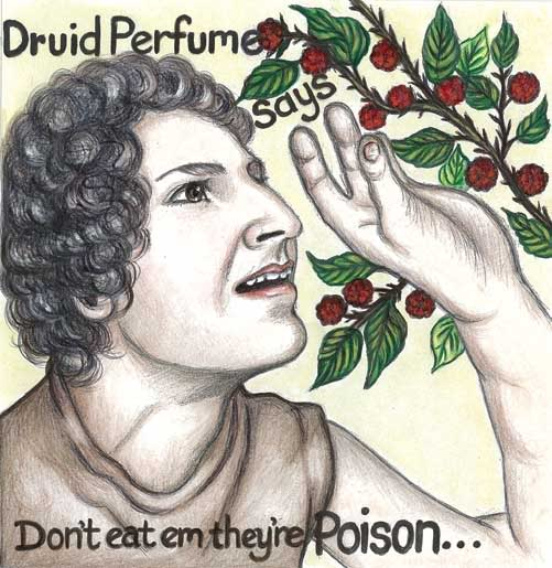 Druid Perfume Dont cover